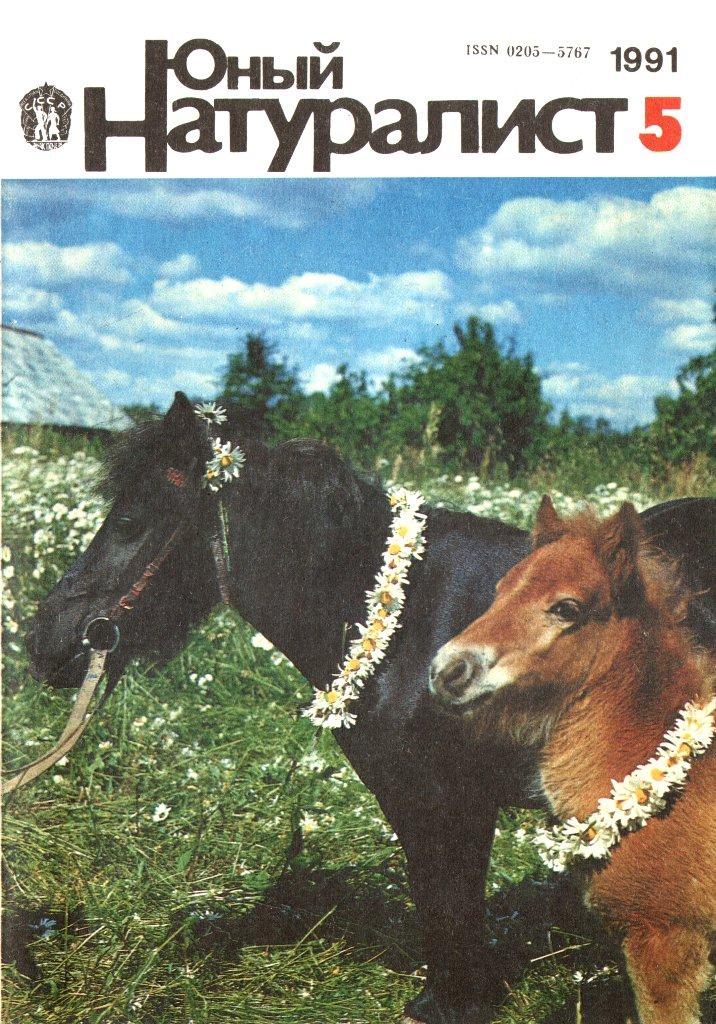 Юн�й на���али�� 1991 � 5 Де��кие ж��нал� Ка�алог